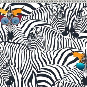 zomerse zebra tricot