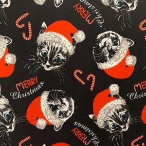 kerst tricot poezen